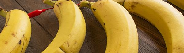 MaKey MaKey: make a banana piano